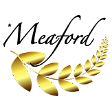 Meaford Film